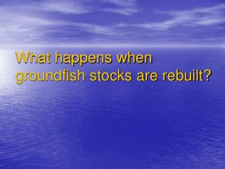 What happens when groundfish stocks are rebuilt?