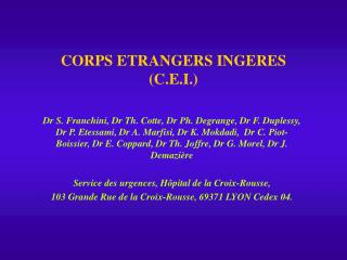 CORPS ETRANGERS INGERES C.E.I.