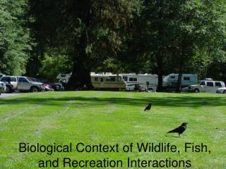 Biological Context of Wildlife, Fish, and Recreation Interactions