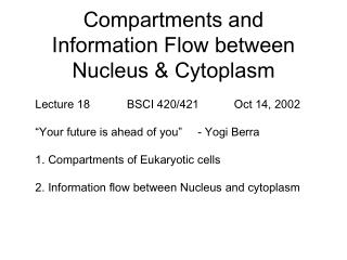 Compartments and Information Flow between Nucleus & Cytoplasm