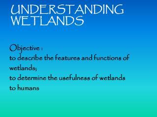 UNDERSTANDING WETLANDS