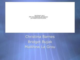 Christina Barnes Bridget Bujak Matthew La Grou