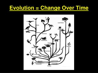 Evolution = Change Over Time