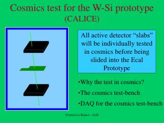 Cosmics test for the W-Si prototype  (CALICE)