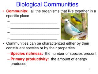 Biological Communities