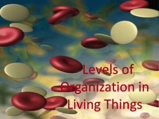 L evels  of Organization in Living Things