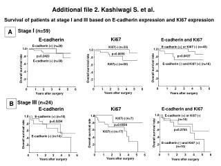 Additional file 2. Kashiwagi S. et al.