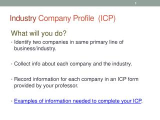 Industry  Company Profile  (ICP)
