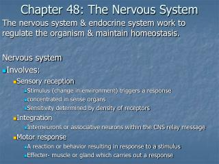 Chapter 48: The Nervous System