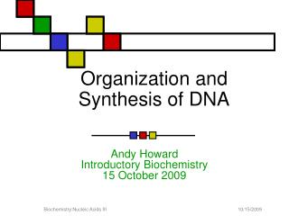 Organization and Synthesis of DNA