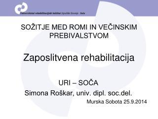 SOŽITJE MED ROMI IN VEČINSKIM PREBIVALSTVOM  Zaposlitvena rehabilitacija