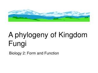 A phylogeny of Kingdom Fungi