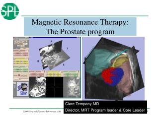 Magnetic Resonance Therapy: The Prostate program