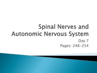 Spinal Nerves and Autonomic Nervous System