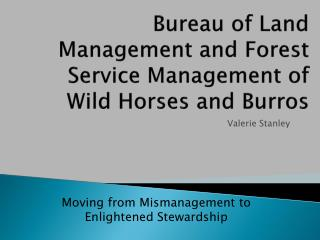 Bureau of Land Management and Forest Service Management of Wild Horses and Burros