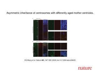 XQ Wang  et al. Nature 461 ,  947 - 955  (2009) doi:10.1038/nature08 435