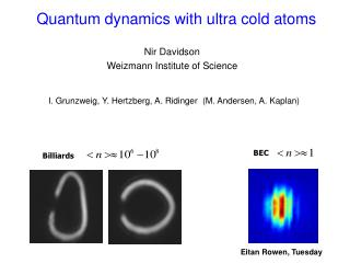 Quantum dynamics with ultra cold atoms