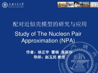 Study of The Nucleon Pair Approximation (NPA)