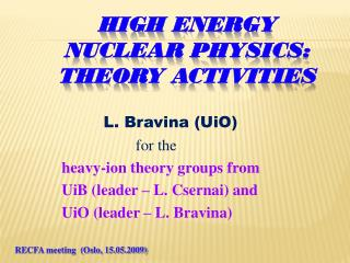 High  Energy Nuclear  Physics :  Theory activities