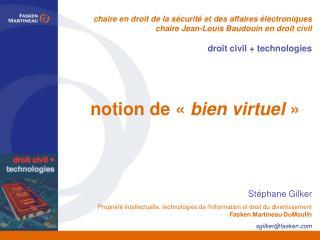 notion de « bien virtuel »