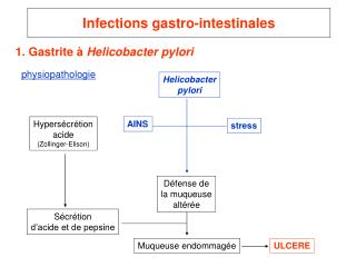 Infections gastro-intestinales