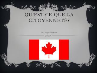 Qu'est ce que la citoyenneté?