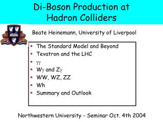 Di-Boson Production at  Hadron Colliders