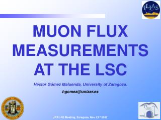 MUON FLUX MEASUREMENTS AT THE LSC