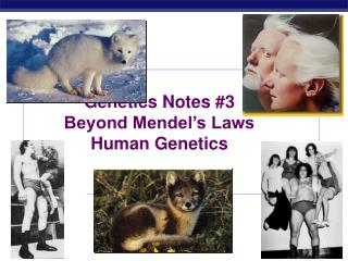Genetics Notes #3 Beyond Mendel's Laws Human Genetics