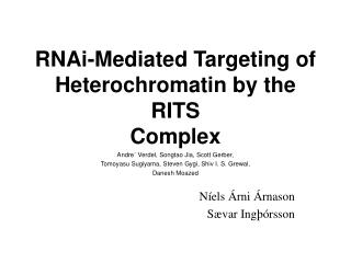 RNAi-Mediated Targeting of Heterochromatin by the RITS Complex