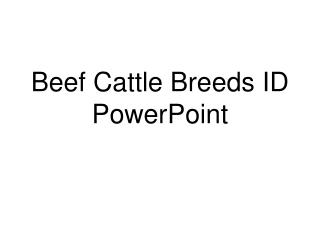 Beef Cattle Breeds ID PowerPoint