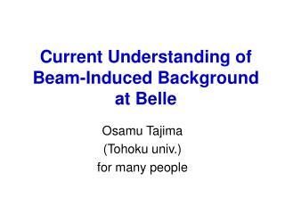 Current Understanding of Beam-Induced Background at Belle