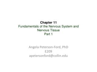 Chapter 11  Fundamentals of the Nervous System and  Nervous Tissue Part 1