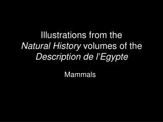 Illustrations from the Natural History  volumes of the  Description de l'Egypte
