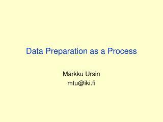 Data Preparation as a Process