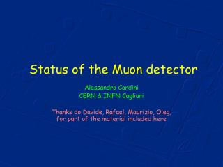 Status of the Muon detector