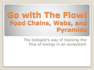 Go with The Flow! Food Chains, Webs, and Pyramids
