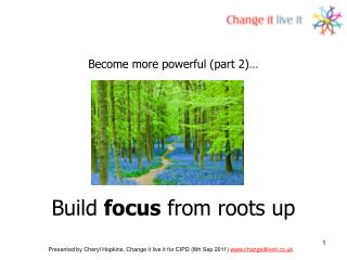 Build  focus  from roots up