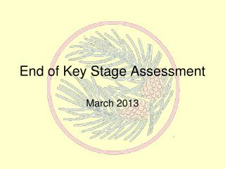 End of Key Stage Assessment