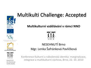 Multikulturní vzdělávání v rámci NNO NESEHNUTÍ Brno Mgr. Lenka Šafránková Pavlíčková