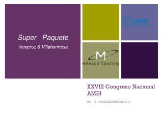 XXVIII Congreso Nacional AMEI