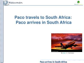 Paco travels to South Africa: Paco arrives in South Africa