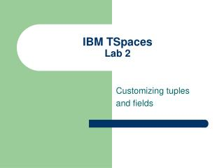 IBM TSpaces Lab 2