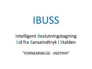 IBUSS I ntelligent  B eslutningstagning  U d fra  S anseindtryk i  S talden