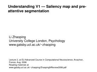 Understanding V1 --- Saliency map and pre-attentive segmentation