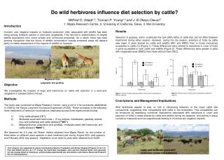 Do wild herbivores influence diet selection by cattle?