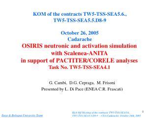 G. Cambi,  D.G. Cepraga,  M. Frisoni Presented by L. Di Pace (ENEA C.R. Frascati)