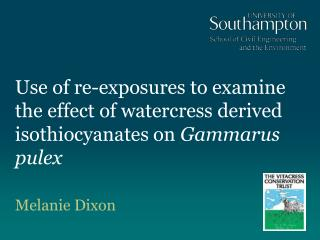 Use of re-exposures to examine the effect of watercress derived isothiocyanates on  Gammarus pulex