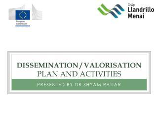 Dissemination / valorisation plan and activities