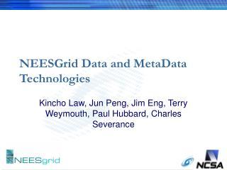 NEESGrid Data and MetaData Technologies
